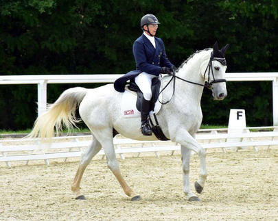 GN Lion 2015-Gilles Bordes & Orion de Cavalhac largeL