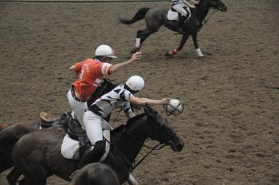 Horse Ball Angers largeL