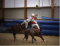 Horse Ball Aramon Gard vs Angers smallL