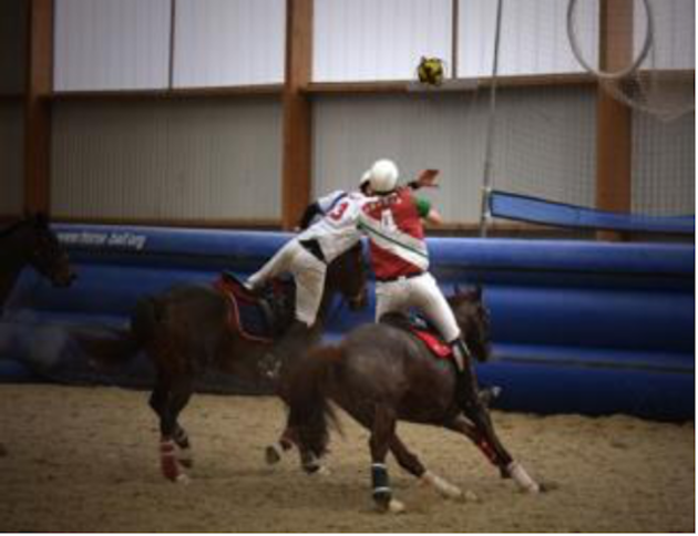 Horse Ball Aramon Gard vs Angers verylargeL