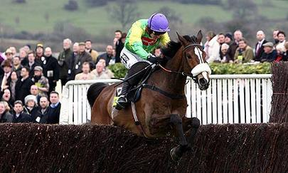 Kauto star largeL