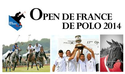 open polo 2014 largeL