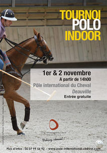 polo 2014- deauville largeP