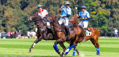 polo chantilly 2014 largeL