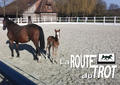 route du trot smallL