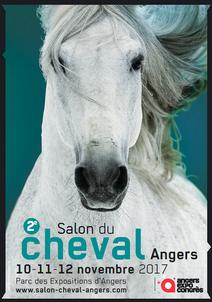 Salon cheval Angers largeP