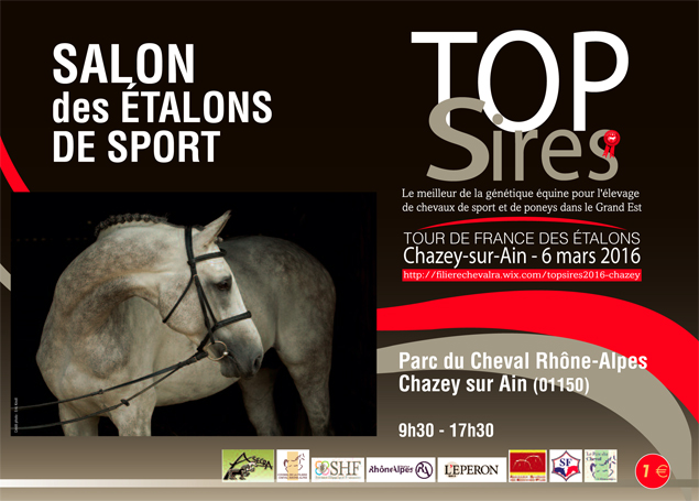 top sires 2016 affiche