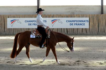 Western 2015-Julien Froissard Chpt France Pleasure avec FABULOUS ABSOLUTE.jpg largeL